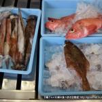 富澤(一ノ関)で魚屋さんの美味しい魚定食ランチを食べる